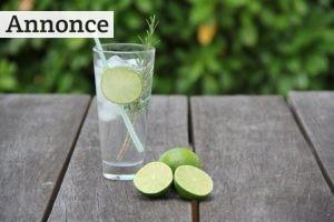 5 tips til at skabe den helt perfekte gin & tonic til din næste fest