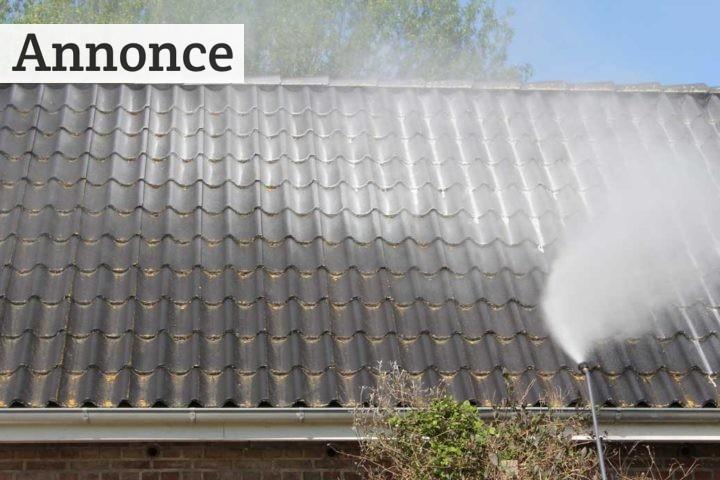 Skal jeg fjerne alger på taget?