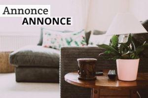 Har du købt et nyt hus, der trænger til en kærlig hånd?
